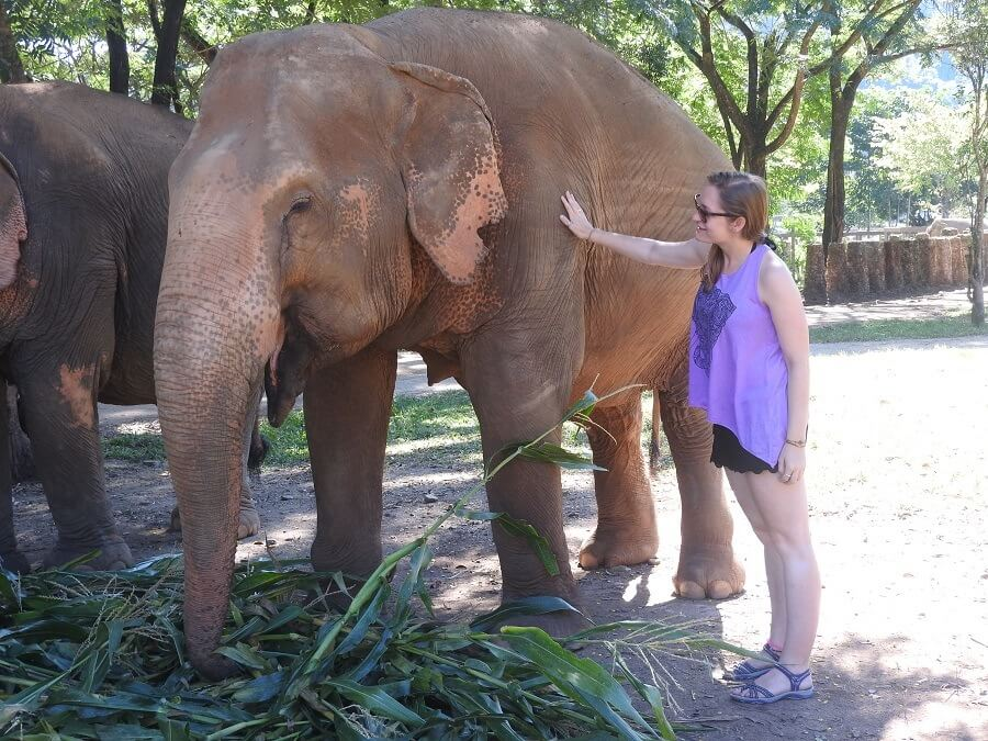 Thea patting an elephant in ENP