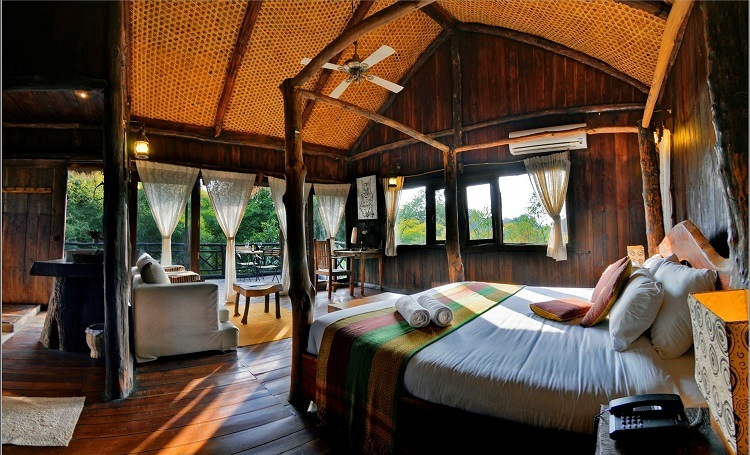 Luxury accommodation room in Bandhavgarh Tiger Reserve