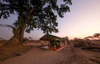 Tented camp in Mdonya Old River Camp