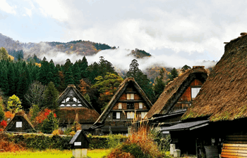 Off the Beaten Path in Japan Listing Image