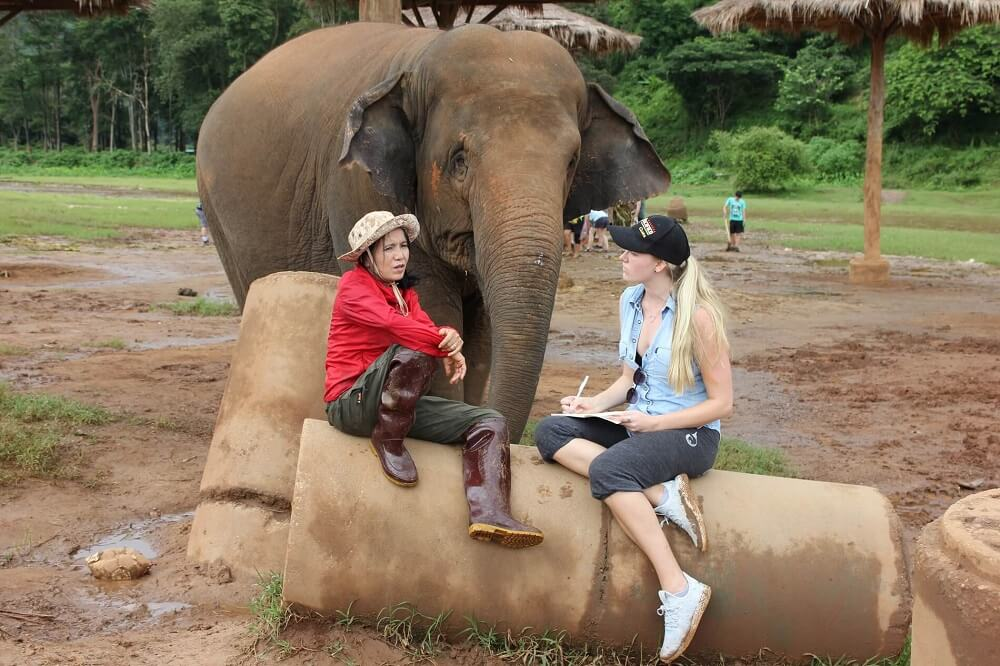 Interview with Lek, the founder of Elephant Nature Park, an elephant sanctuary in Chiang Mai