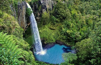 Bridal Veil Waterfalls in New Zealand