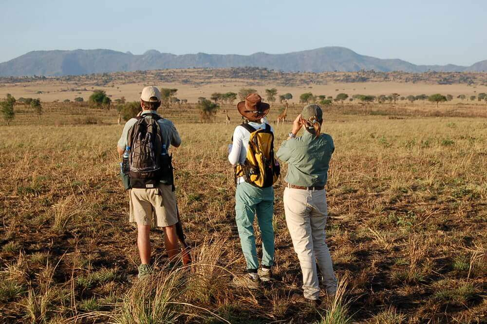walking-african-safari-nature-walk