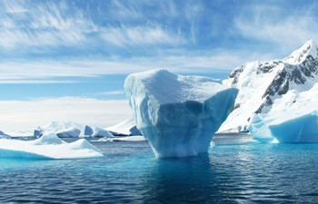View of icebergs in the ocean in Antarctica