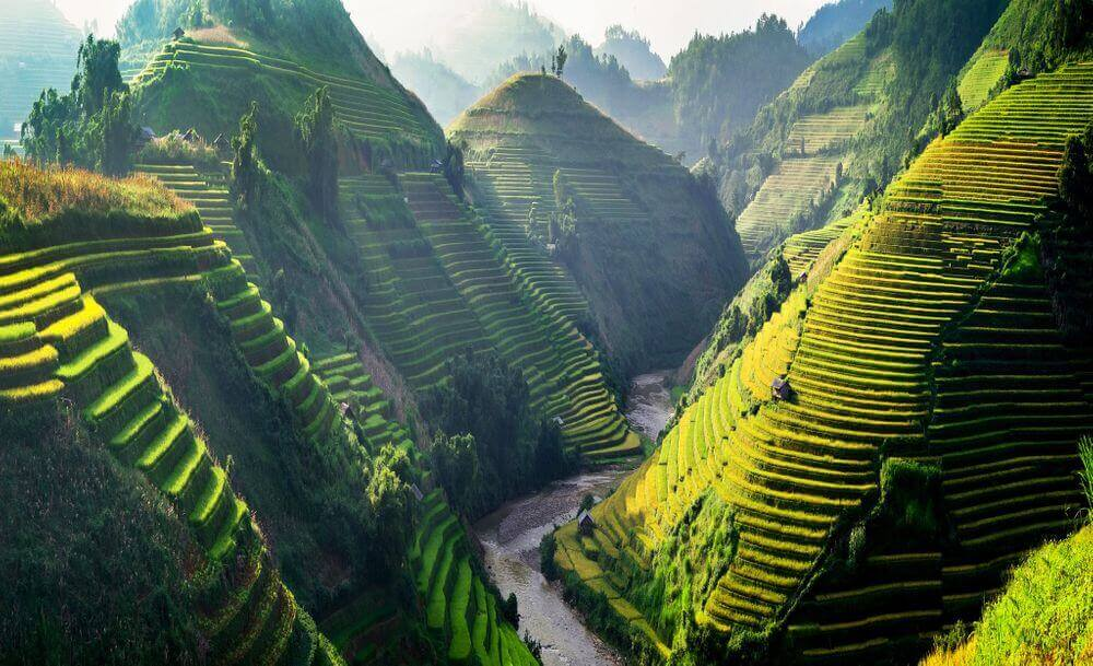 terraced rice fields and mountains in sapa vietnam