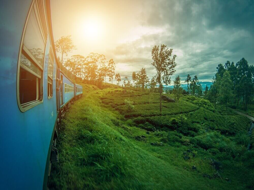 train to ella rolling through lush forests and rice fields