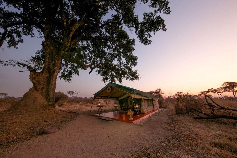 exterior of luxury tent at mdonya old river camp, ruaha national park, tanzania
