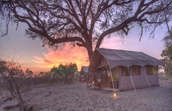 luxury canvas tent at sunset at Savute Under Canvas in Chobe National Park of Botswana