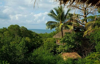 panoramic view over the treehouse and island at Chole Mjini Treehouse Lodge