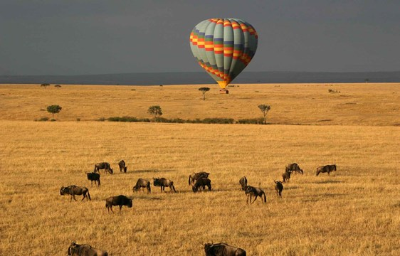 Hot air balloon over Masai Mara, Kenya