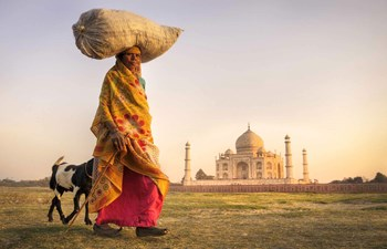 Indian woman carrying rice on her head near the Taj Mahal, India