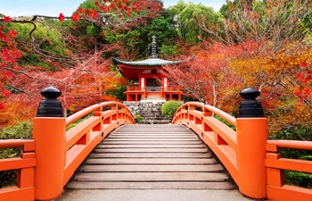 Japan Family Holidays Listing Image