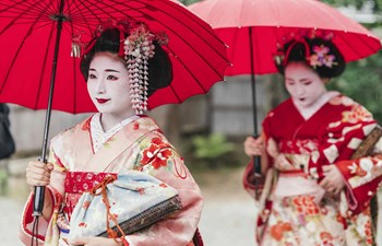 Food & Art: A Cultural Tour of Japan Listing Image