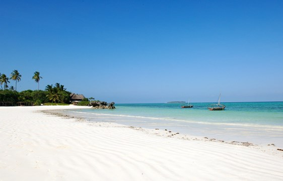 Zanzibar weather in June Listing Image