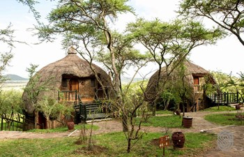 Serengeti Serena Safari Lodge Listing Image