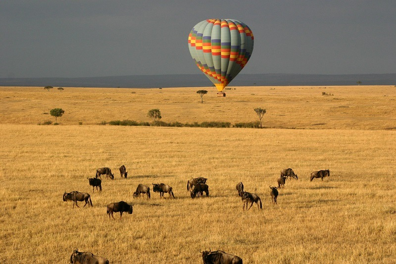 Hot air balloon over Masai Mara plains