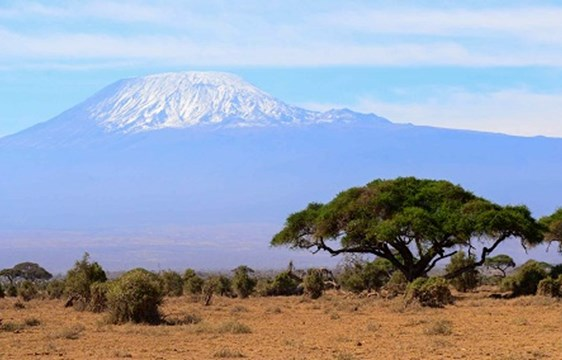 View of Mount Kilimanjaro, Tanzania