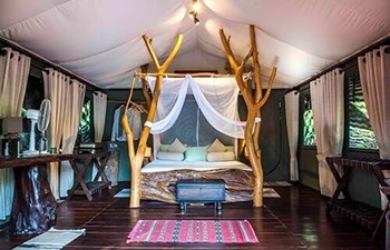Luxury tent in Noel Rodrigo's Leopard Safaris