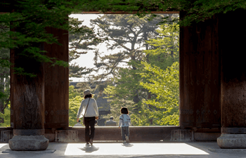 The Best Things to Do in Japan with Kids Listing Image