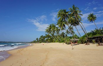 Tangalle Listing Image