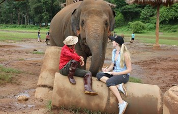 The Best Elephant Sanctuary in Chiang Mai Listing Image