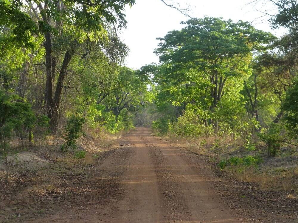 Deserted road on safari in Kafue National Park Zambia
