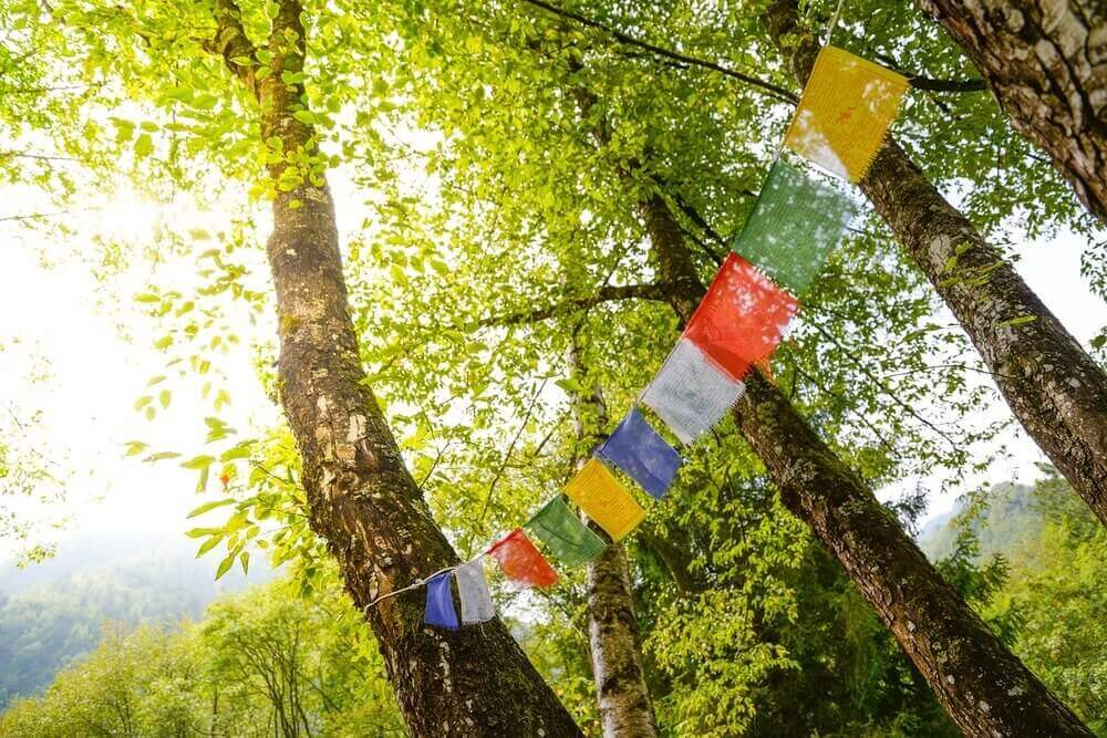 tibetan prayer flags hung for tibetan cultural events