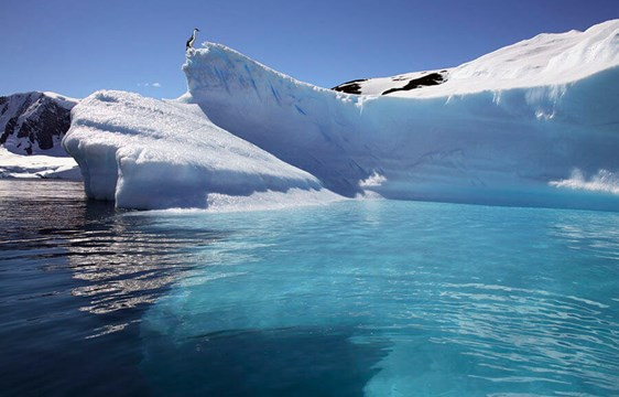 Antarctic Peninsula icebergs in Paradise Bay
