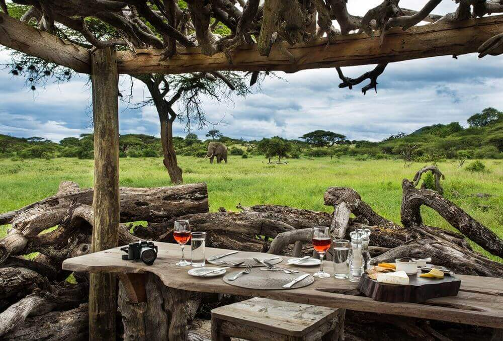 elephant roaming past a dining table at ol donyo lodge in amboseli kenya
