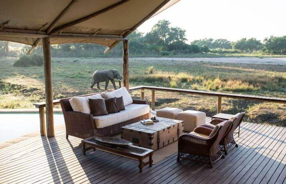 elephant walking past a luxury tent at anabezi camp in zambia