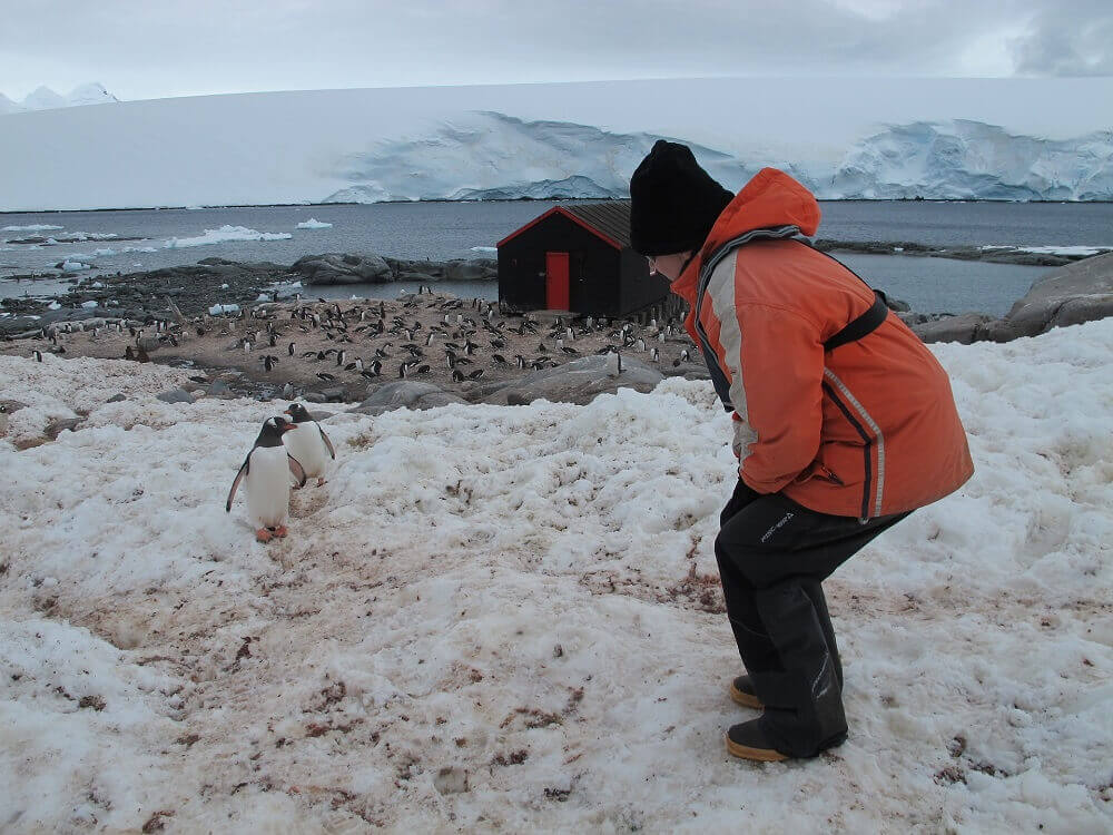 Antarctica expedition pengiun encounter
