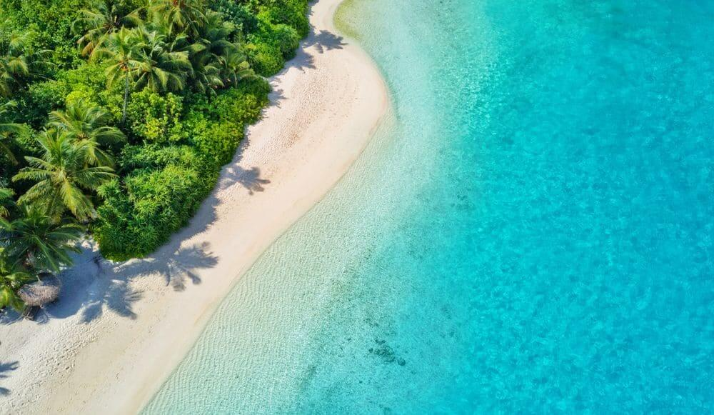 aerial view of sparkling blue water and lush palm fringed beach maldives island