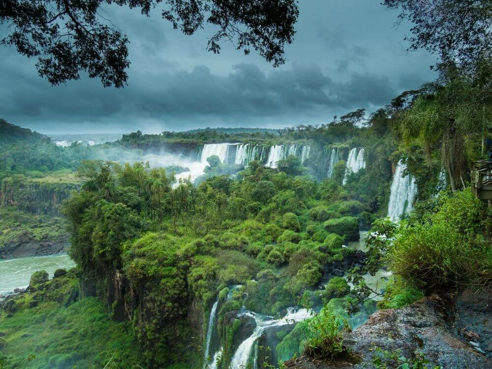 lush greenery around Iguazu Falls