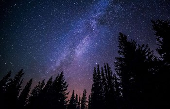milky way landscape over a silhouette of trees