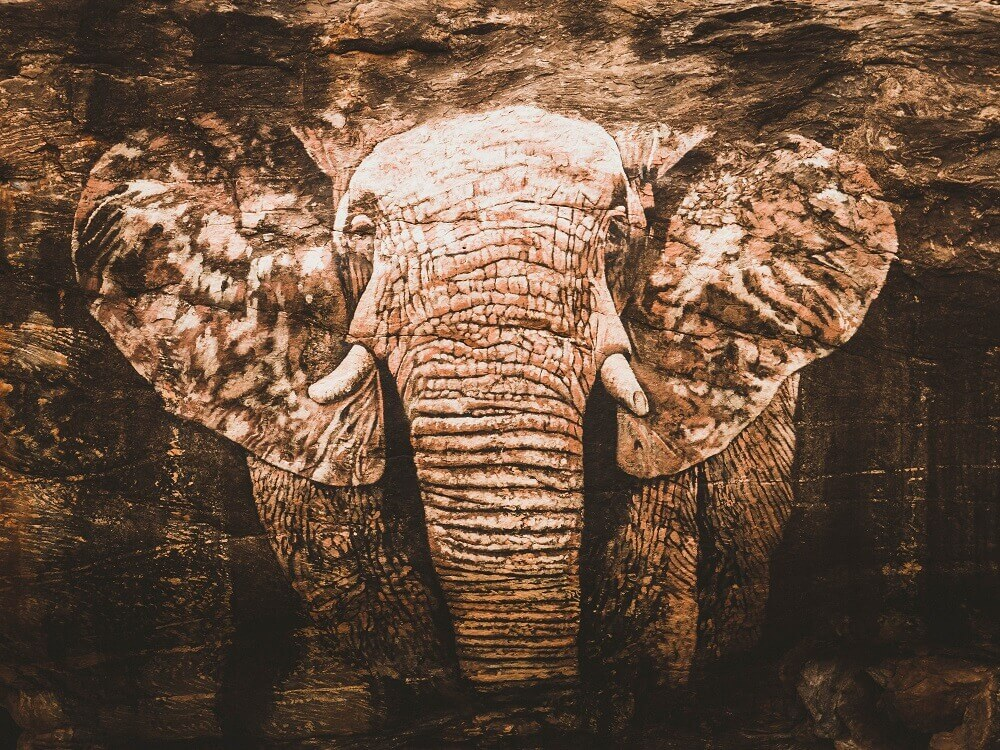 Reteti Elephant Sanctuary in northern Kenya - artwork
