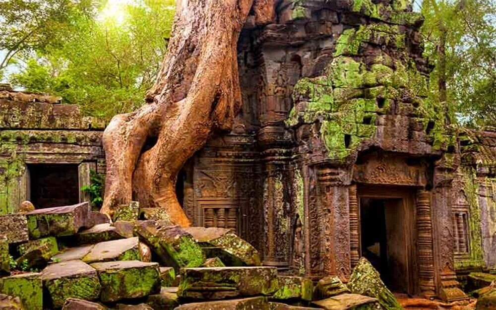 Ta Prohm temple with trees in Angkor Cambodia