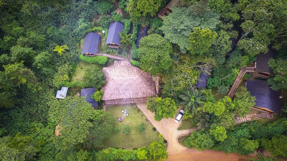 aerial view of the eco chalet at buhoma lodge outside bwindi impenetrable national park, uganda