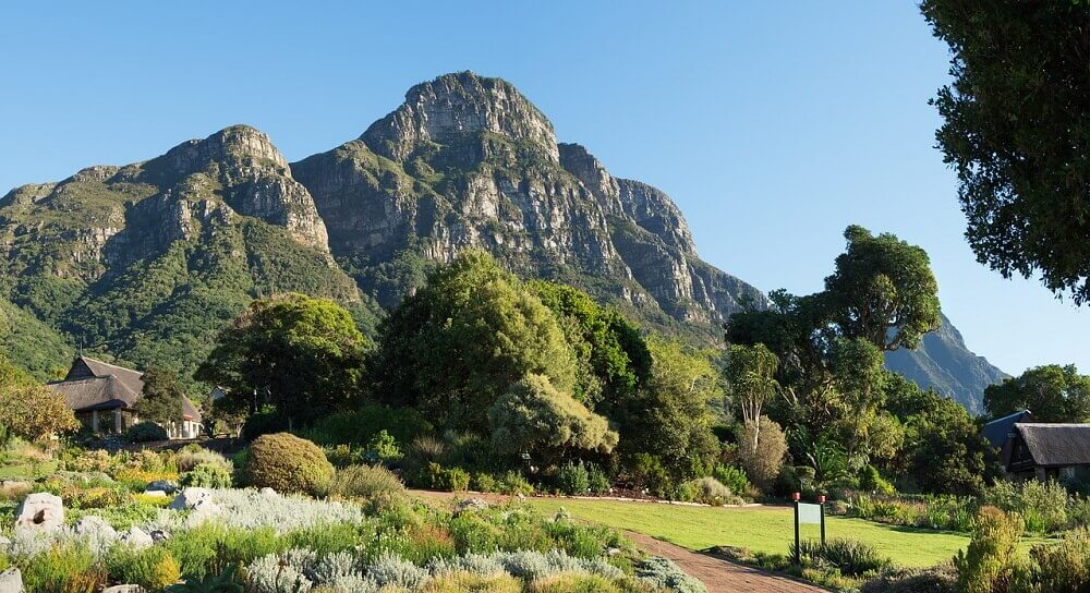 Kirstenbosch Botanical Gardens - Cape Town with Kids