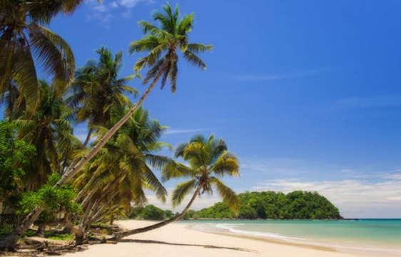 palm trees, white sand and crystal blue waters of Nosy Be Beach in Madagascar