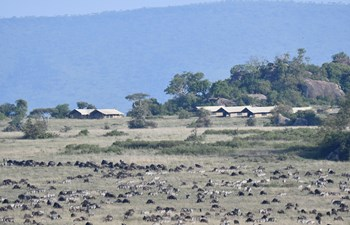 Serengeti Safari Camp Listing Image