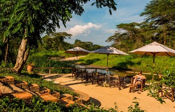 Ishasha Wilderness Camp Listing Image